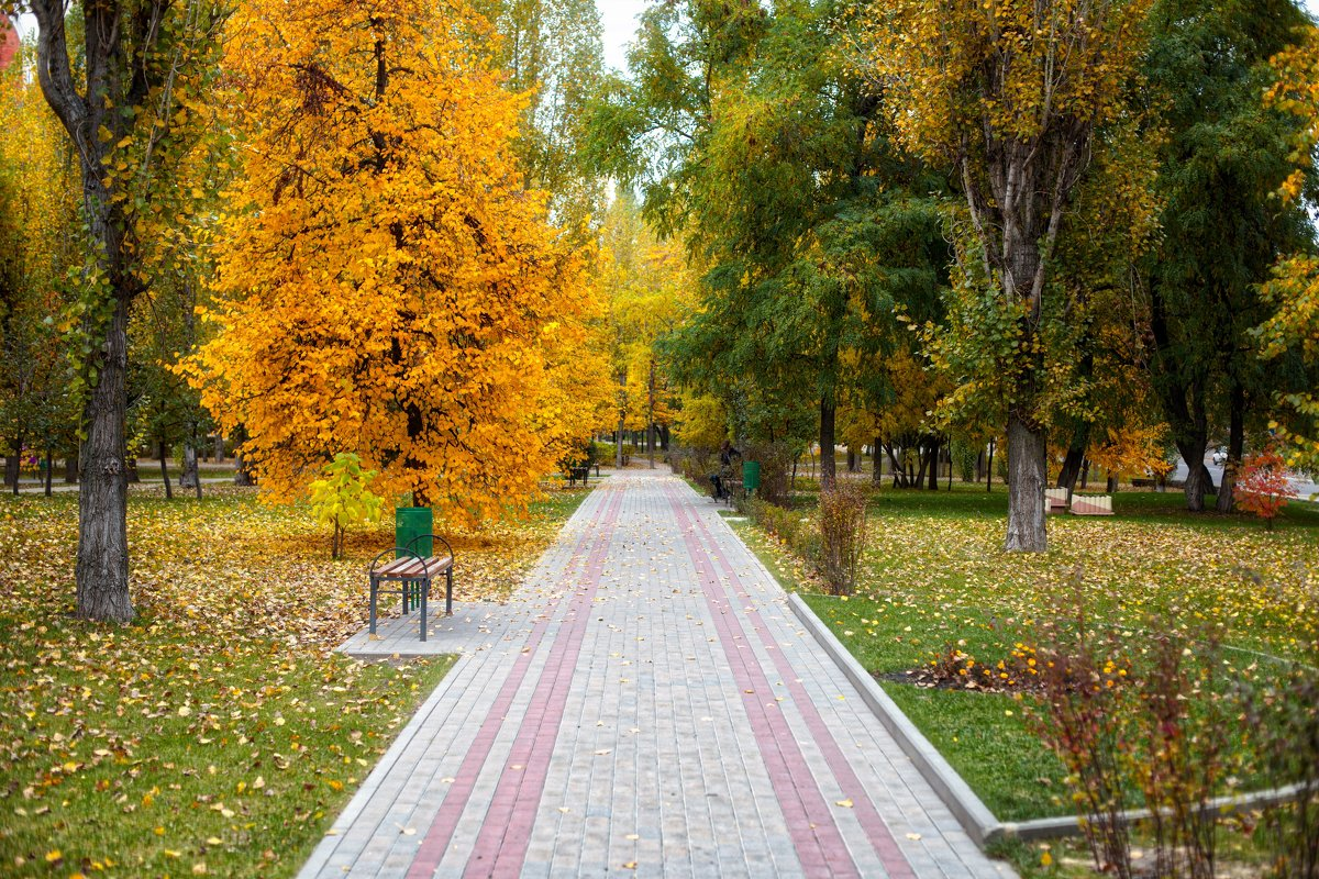 Осенний парк - Елена Кознова