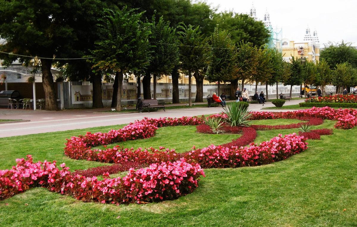 Кисловодск. Орнамент из цветов на Курортном Бульваре - татьяна