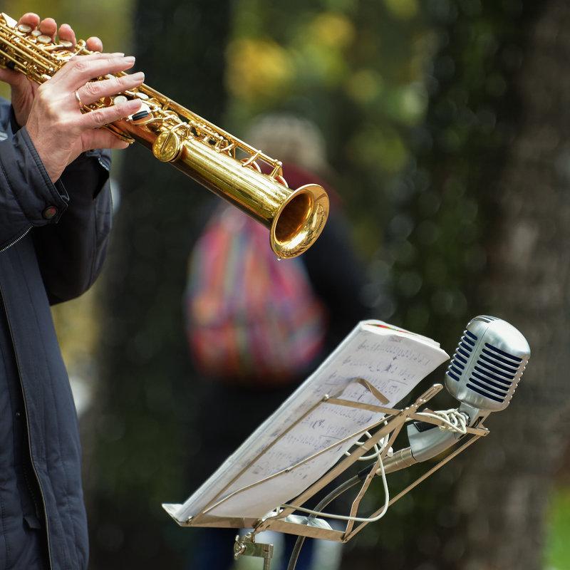 Музыка в осеннем парке - Константин Косов