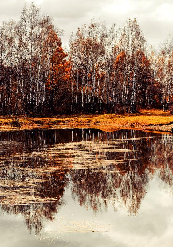 осень, грусть - Инна