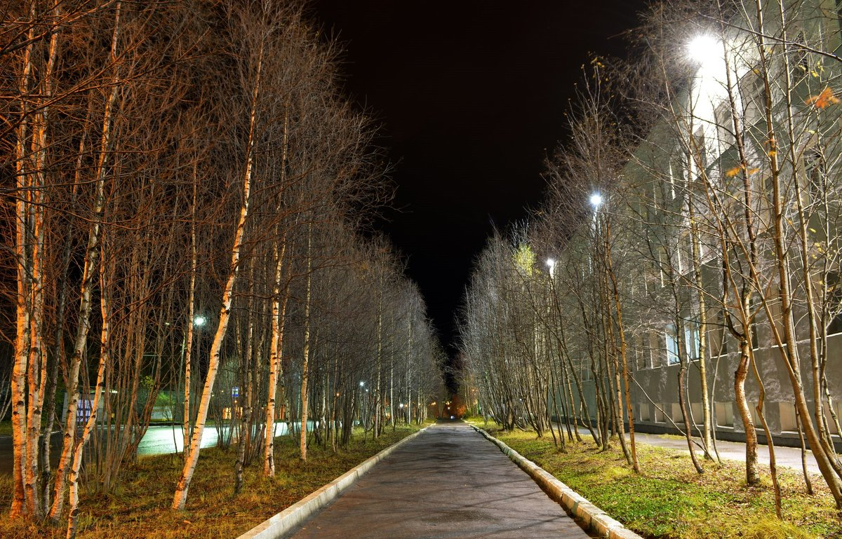... ночь... - Галина Батавина