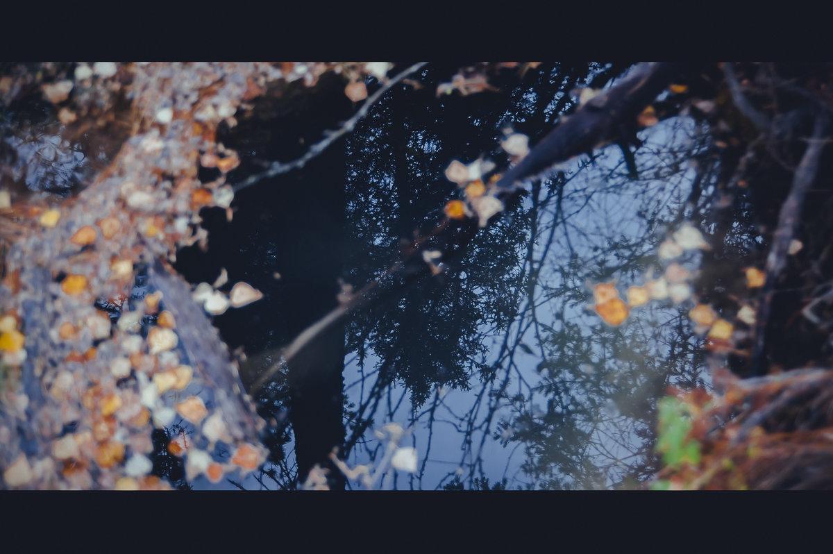 Около Гейзерного озера - Elena Nikitina