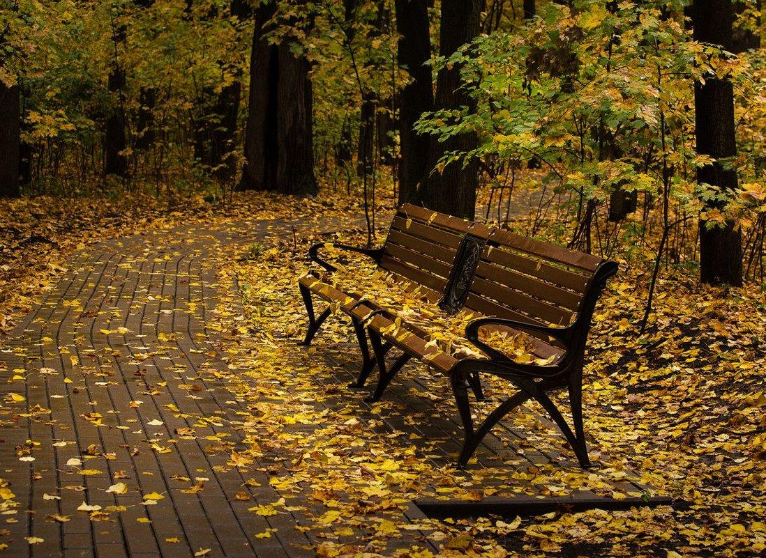 Опустевший парк - Ирина Климова