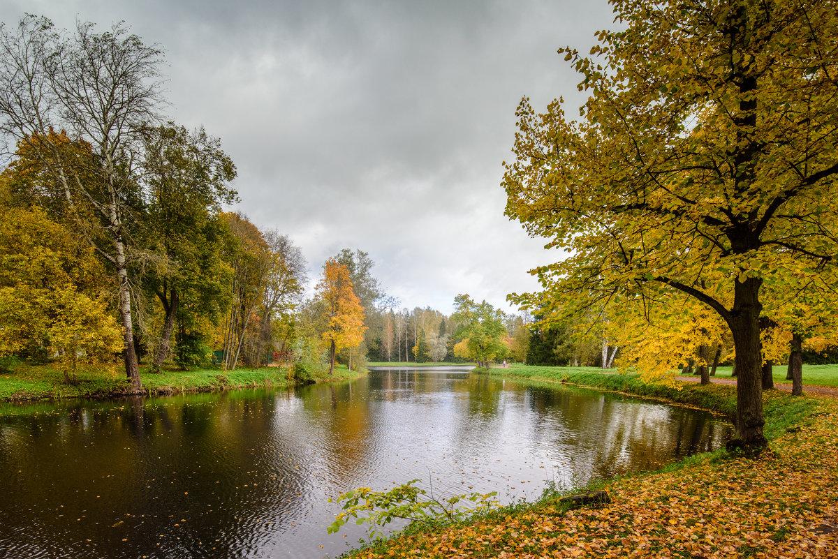 В Павловском парке - Юрий Бутусов