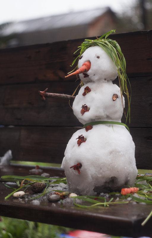 Октябрьский снеговик - Вера Арасланова
