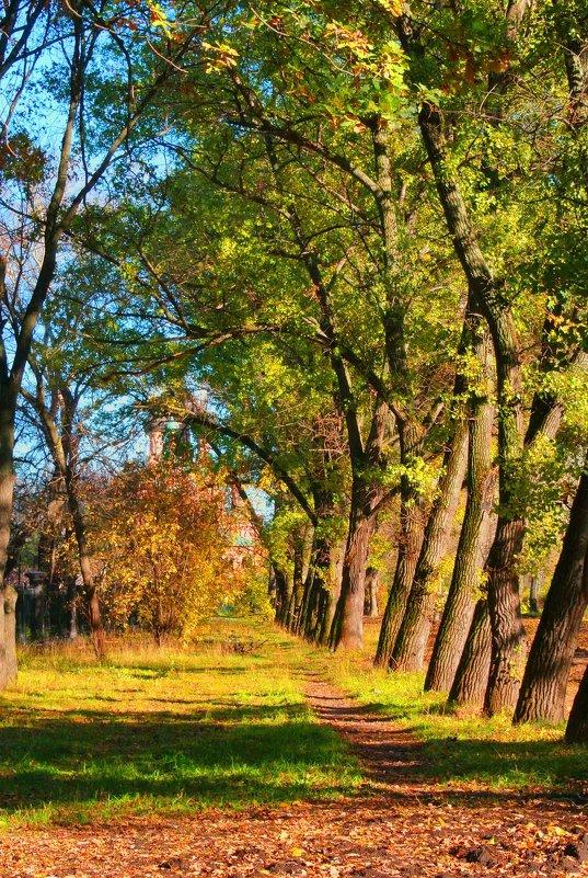 Осень - Aioneza (Алена) Московская