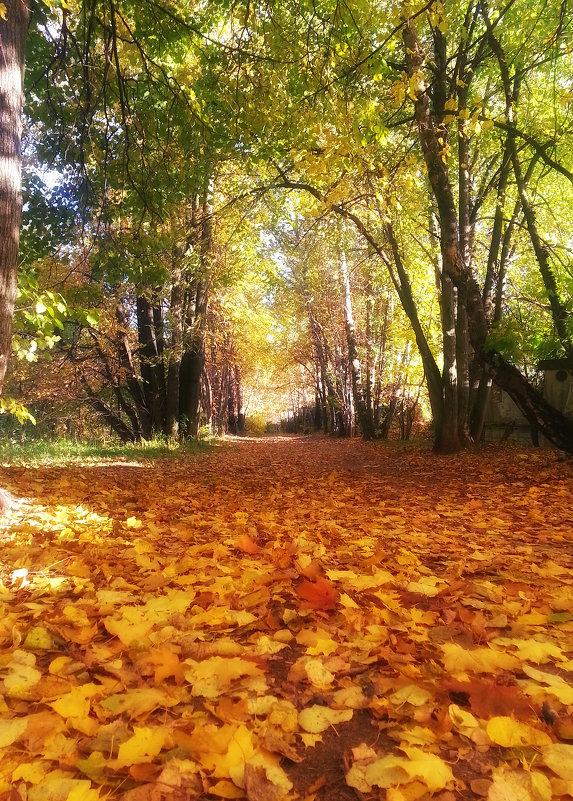 Золотая осень - Марина Назарова