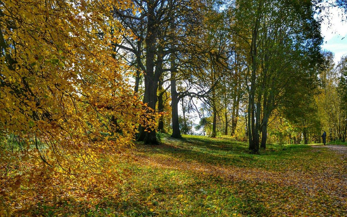 Осень на Смоленщине (12) - Милешкин Владимир Алексеевич
