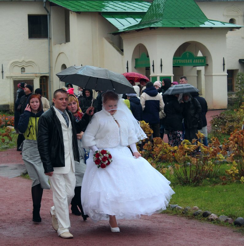 Дождь - к счастью.. - Vladimir Semenchukov