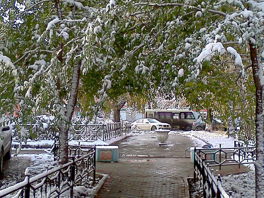 Первый снег - Наталья ***