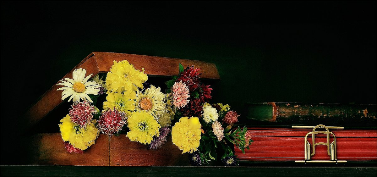 Цветы запоздалые.... - Валерия  Полещикова