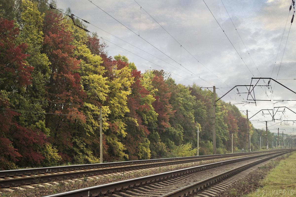 Осень - Юлия Фалей