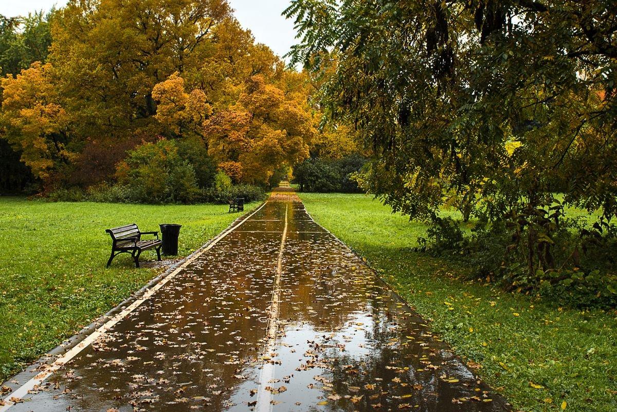 По осенним дорожкам в старом парке - Ирина Климова