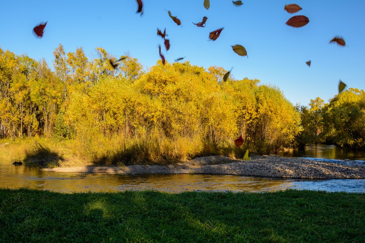 Осень, золотые листопады - Константин Шабалин