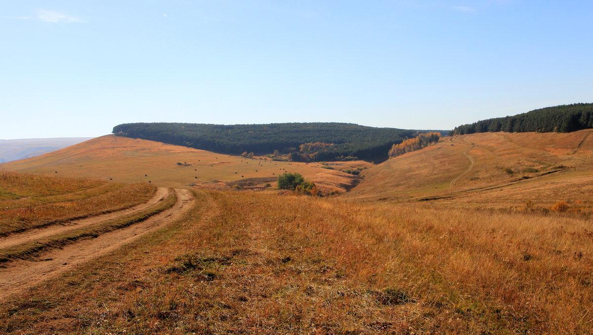 Осень в предгорьях Северного Кавказа. - Vladimir 070549