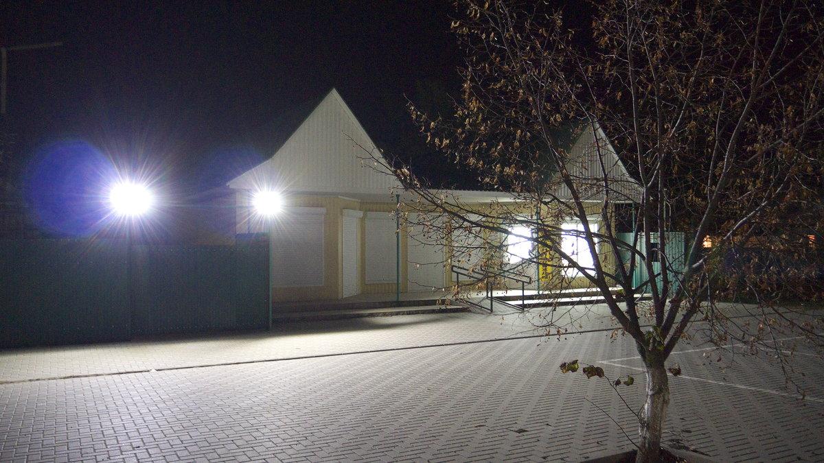 Опавшая липа - Сергей Махонин