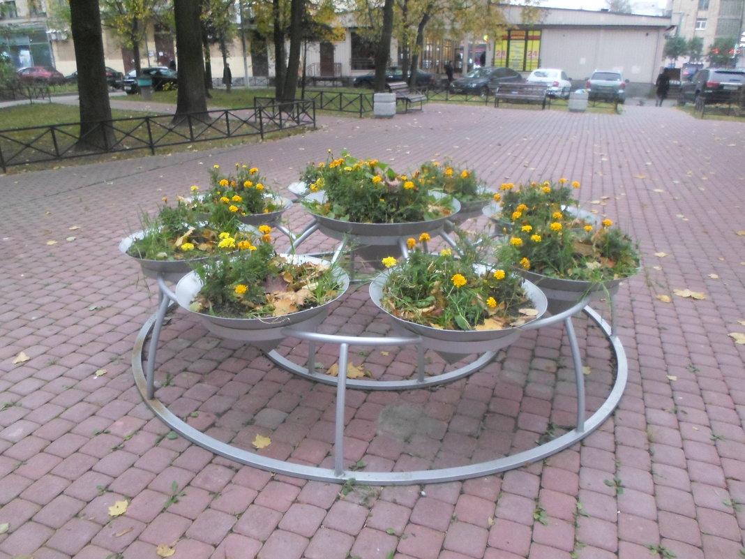 Осень в питерском дворике - BoxerMak Mak