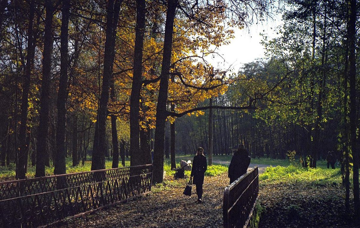 Парк - Сергей Тарабара