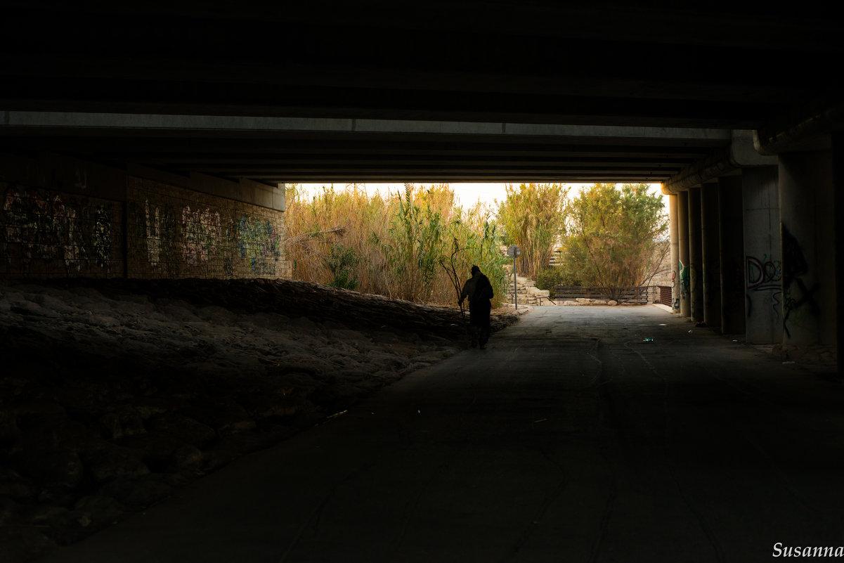 Одинокий путник - susanna vasershtein