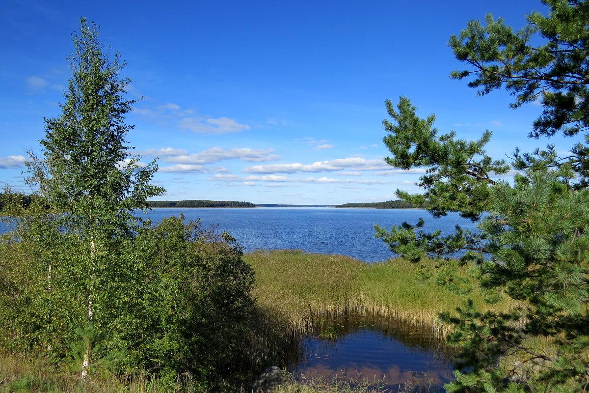 Финский залив - Светлана