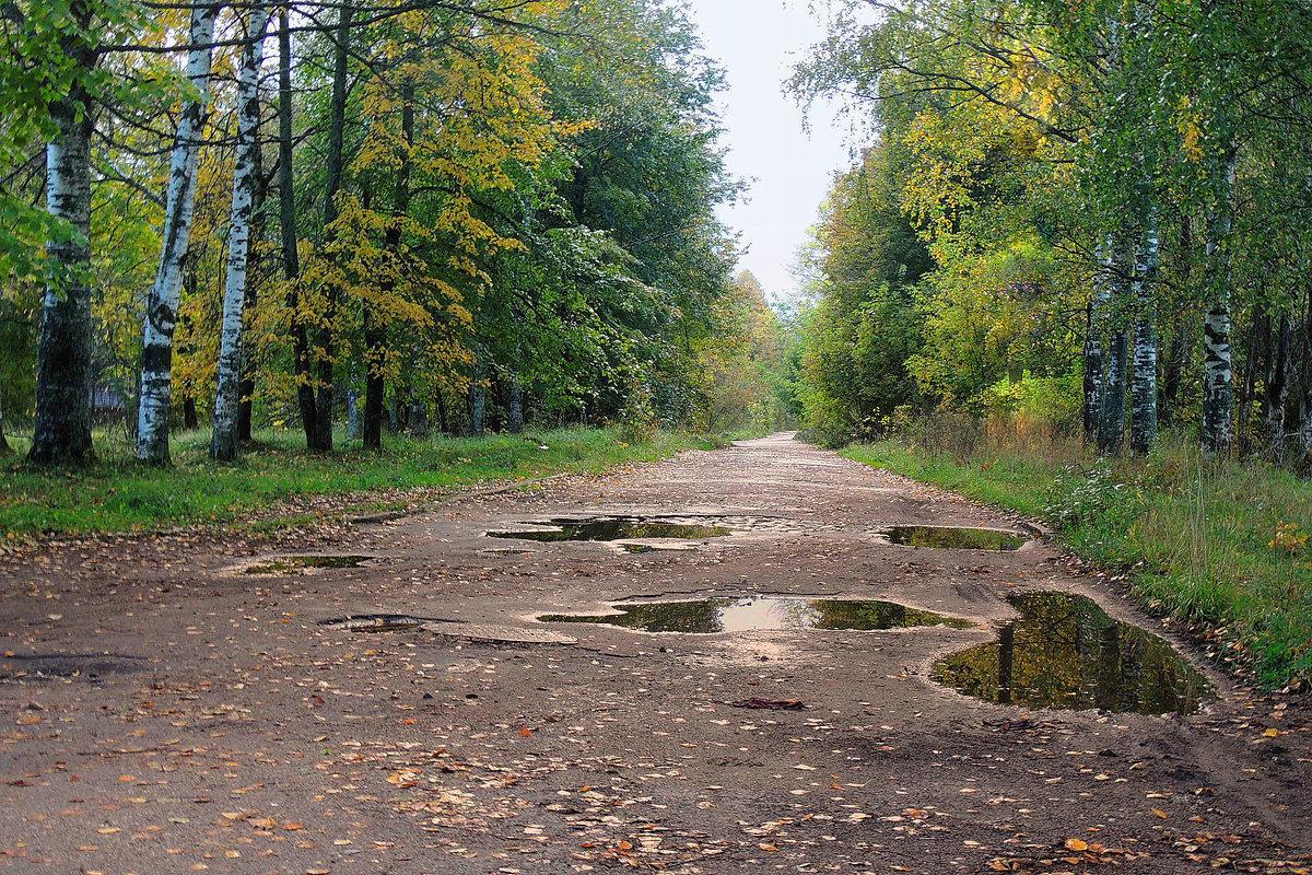 Дождливый, осенний день - Павлова Татьяна Павлова