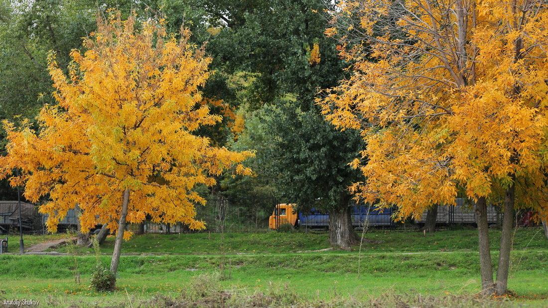 Осенний Камаз - Анатолий