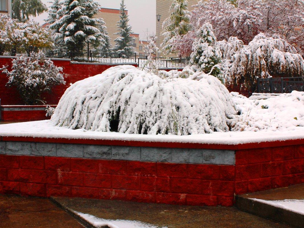 Фотопроект Снежные фонтаны - Наталья Золотых-Сибирская