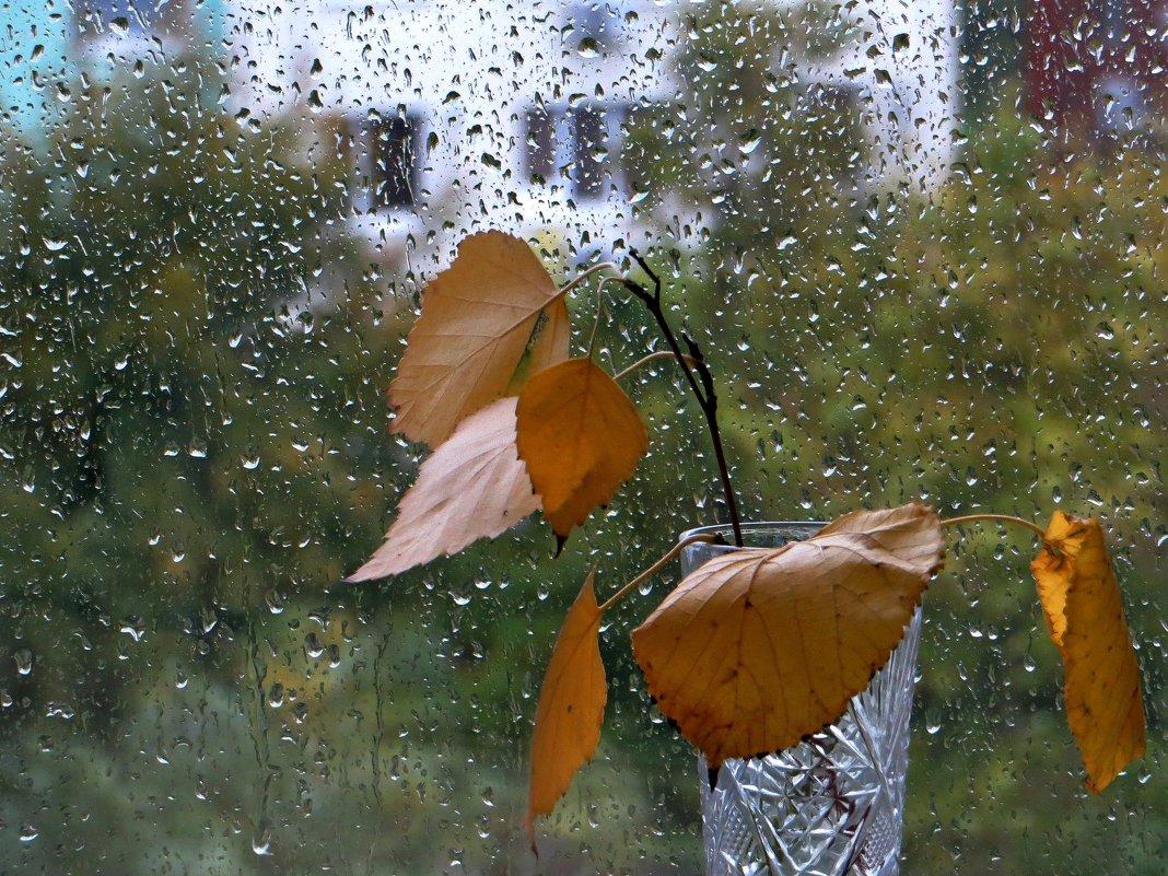 Хрустальные слёзы осени - Татьяна Смоляниченко