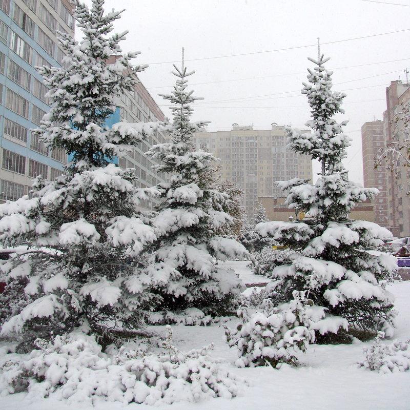 Генеральная репетиция Нового года - Татьяна Ким