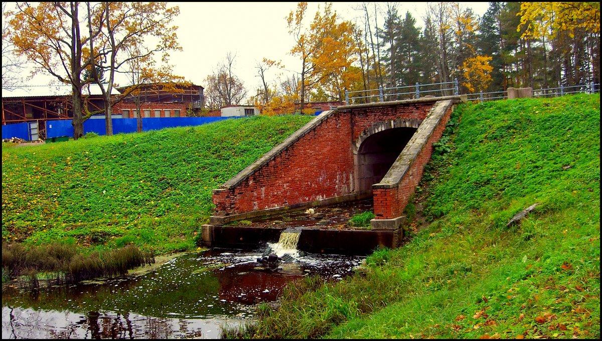В Баболовском парке  /14/ - Сергей