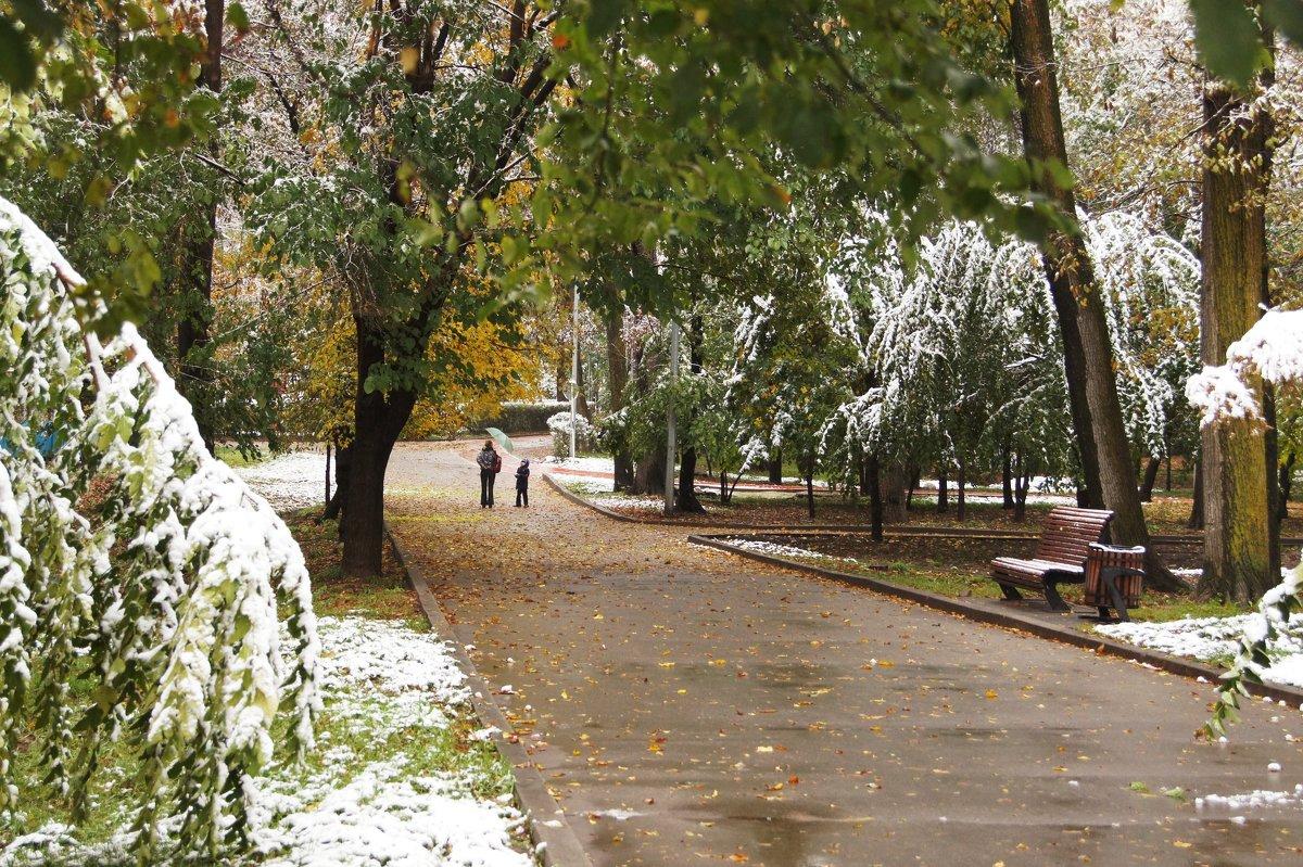 Первый снег - Наташа Федорова