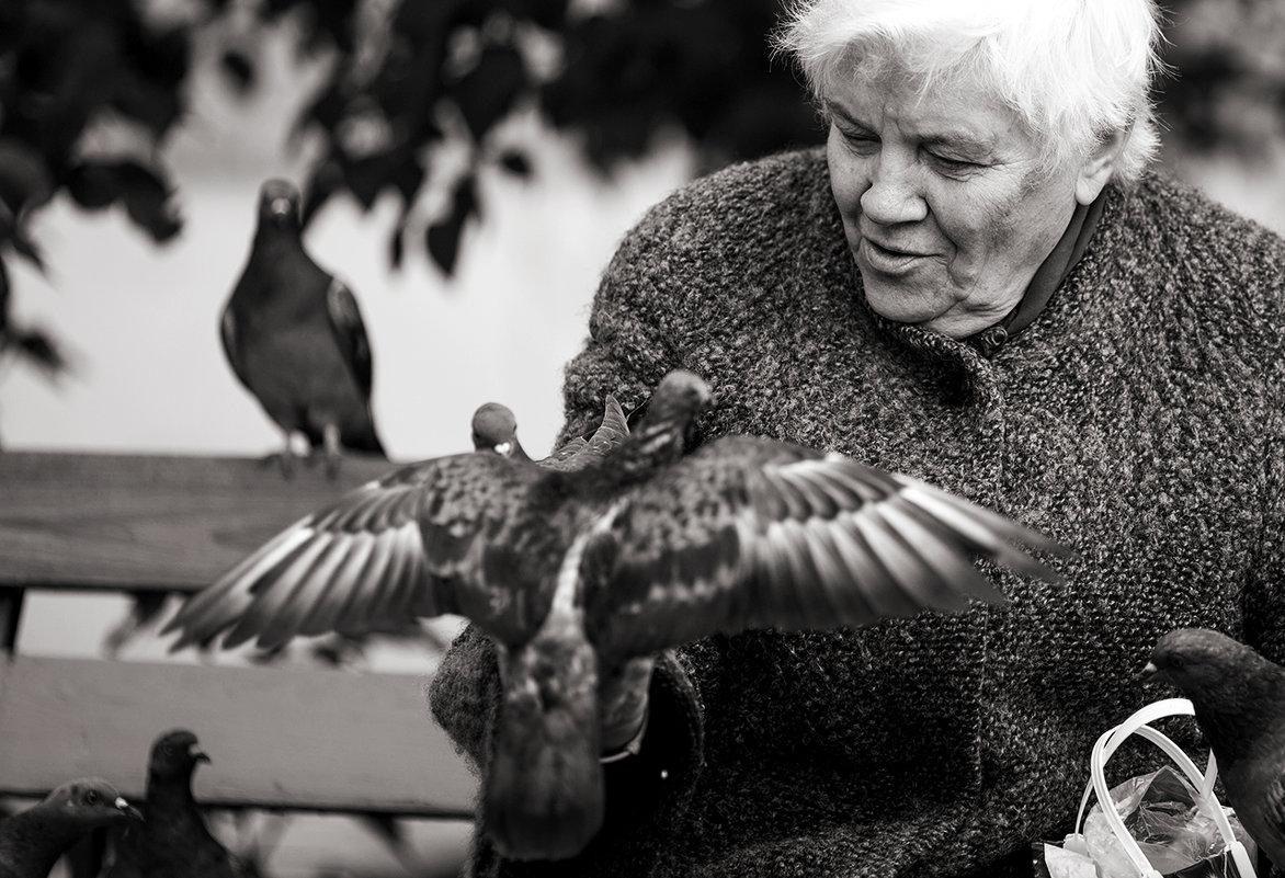 Расскажите, птицы... - Александр Воронов