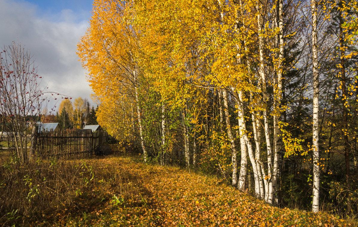 Осень в деревне - Валентин Котляров