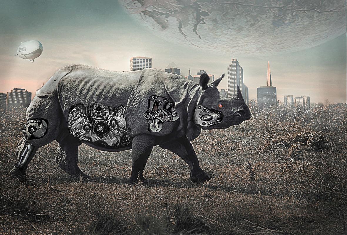Носорог - Виталий Волков