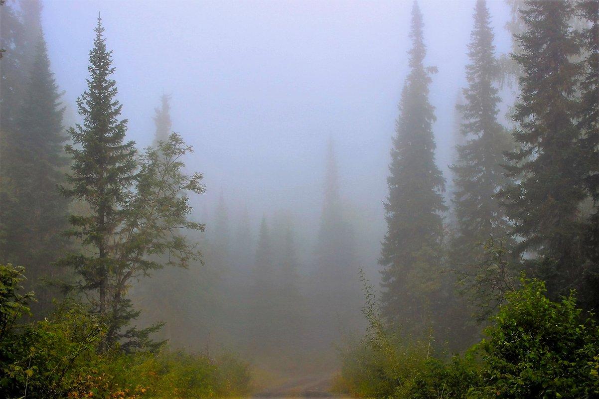 Уходим в туман - Сергей Чиняев