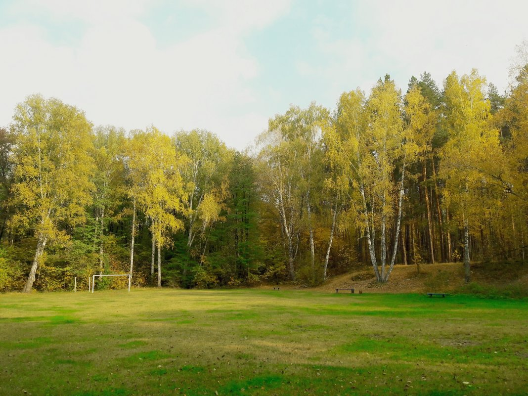 Лесной стадион - Ирина Безверхова
