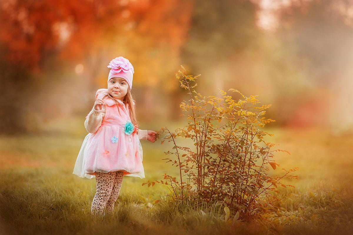 розовая осень - Света Солнцева