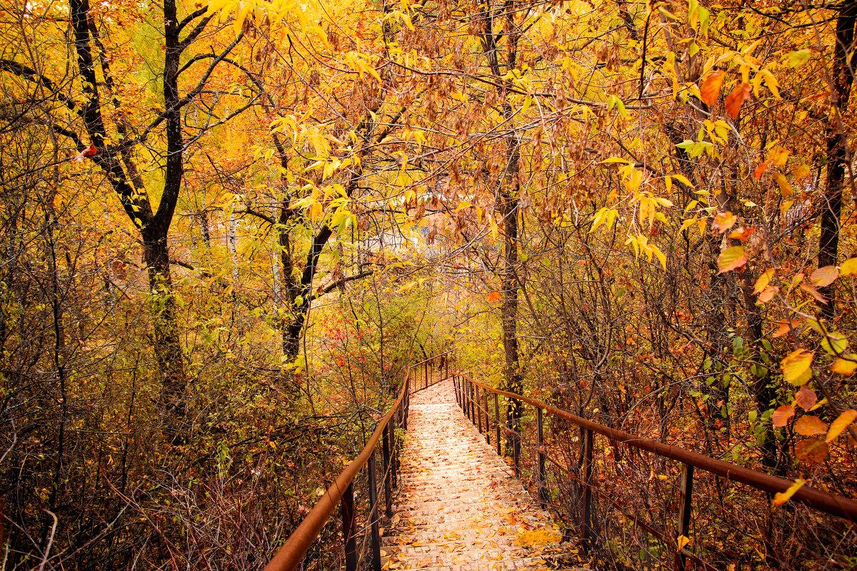 Осень - Альбина Васильева