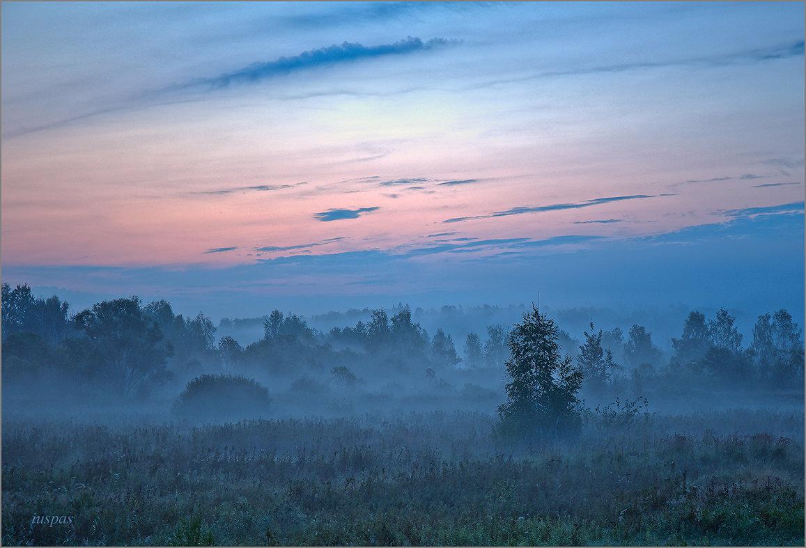 Между ночью и рассветом - Юрий Спасенников