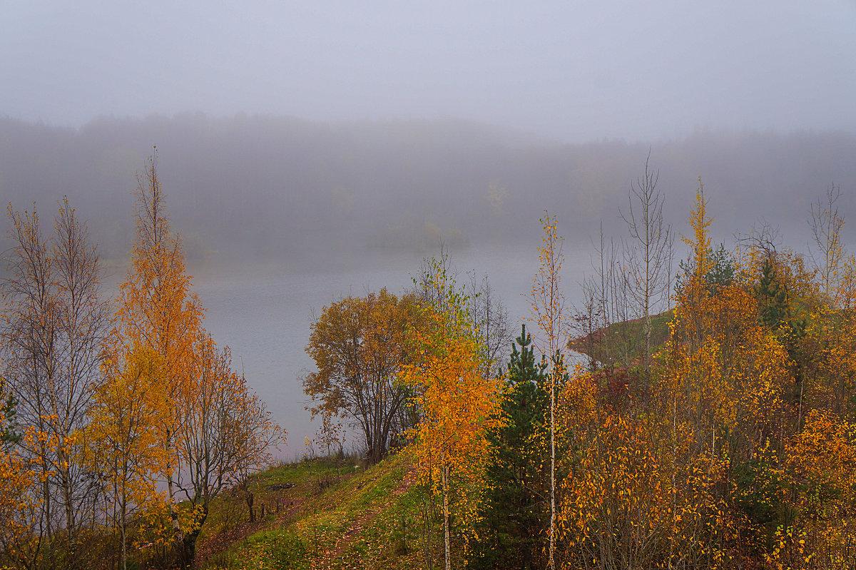 Осенний утренний туман - Анатолий
