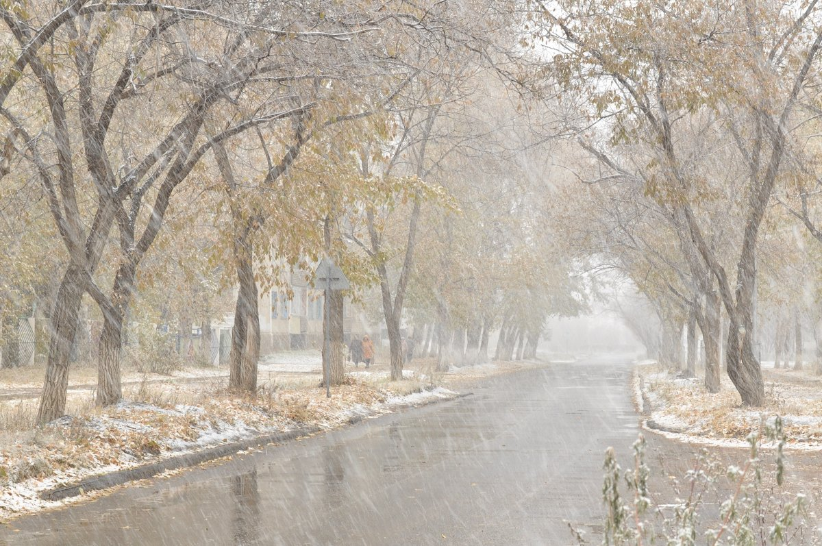 Первый снег - Майя Смехова