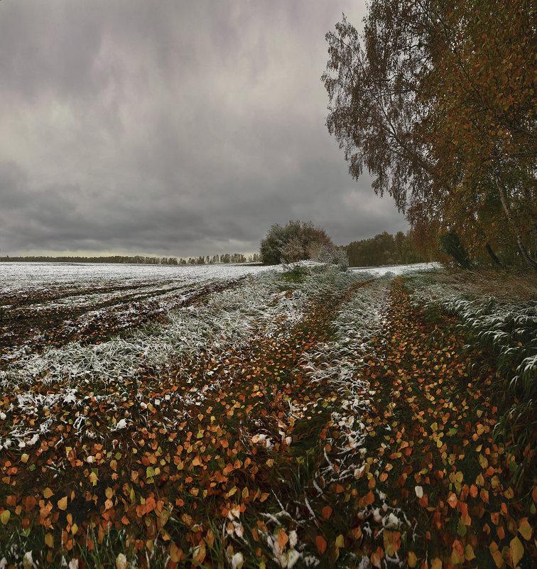 Снежная проседь на жёлтой листве - Сергей Жуков