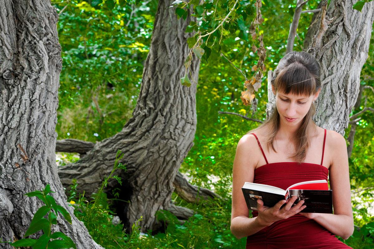 Одиночество и чтение - Александр Сошников