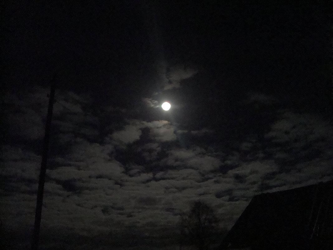ночью из окна - Р о м a н