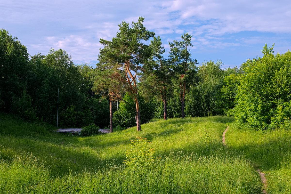 В парке - Валерий Шибаев