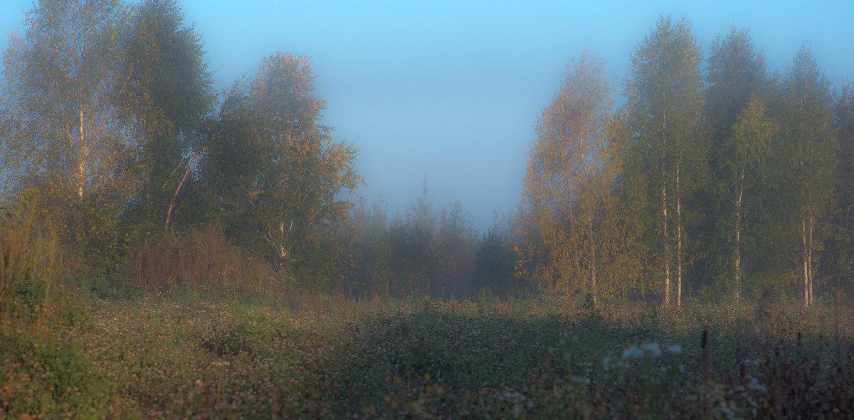 Осень. Утро. Туман. - михаил суворов