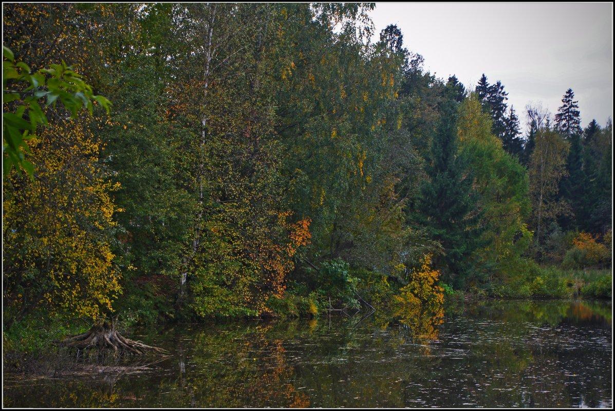 осень в Абрамцево - Дмитрий Анцыферов