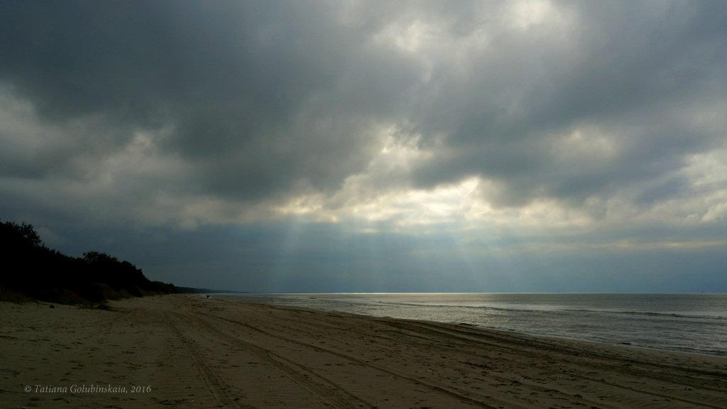 Sunny Bunny at the Baltic sea. - Tatiana Golubinskaia