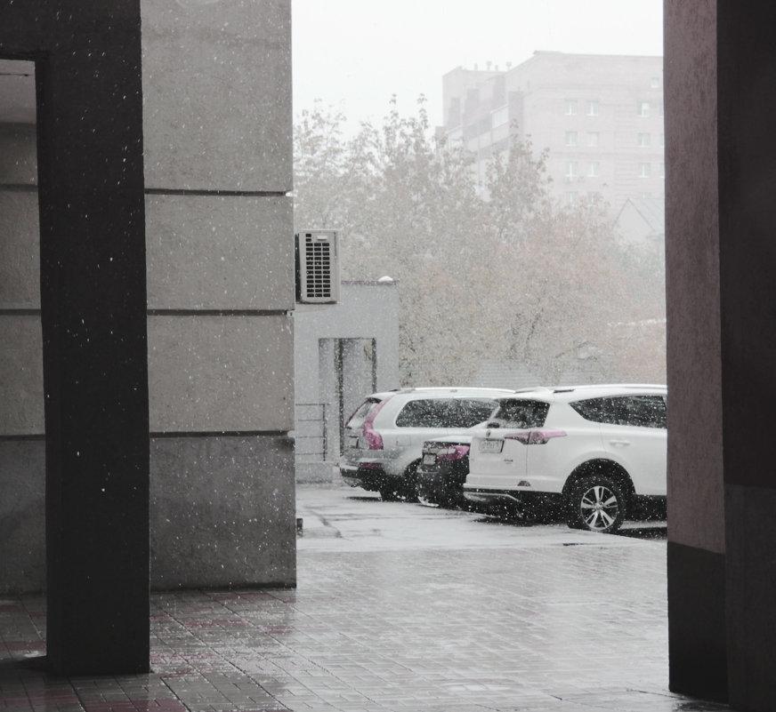 Первый снег - Elena Kashmareva