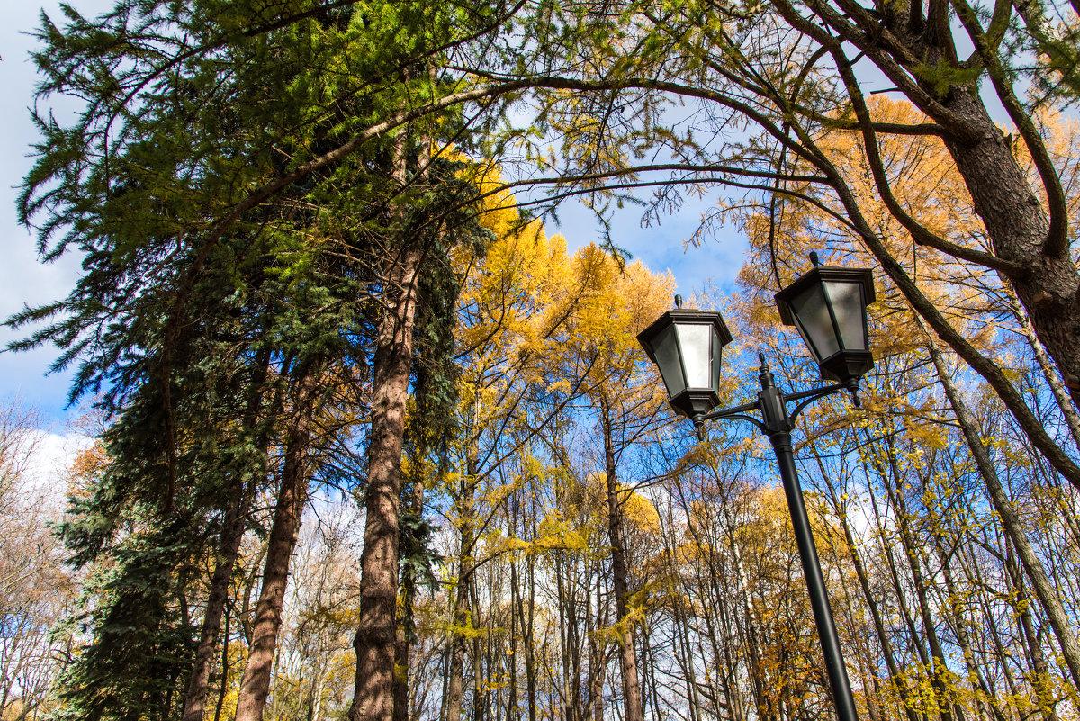 Осень в парке. - Владимир Безбородов